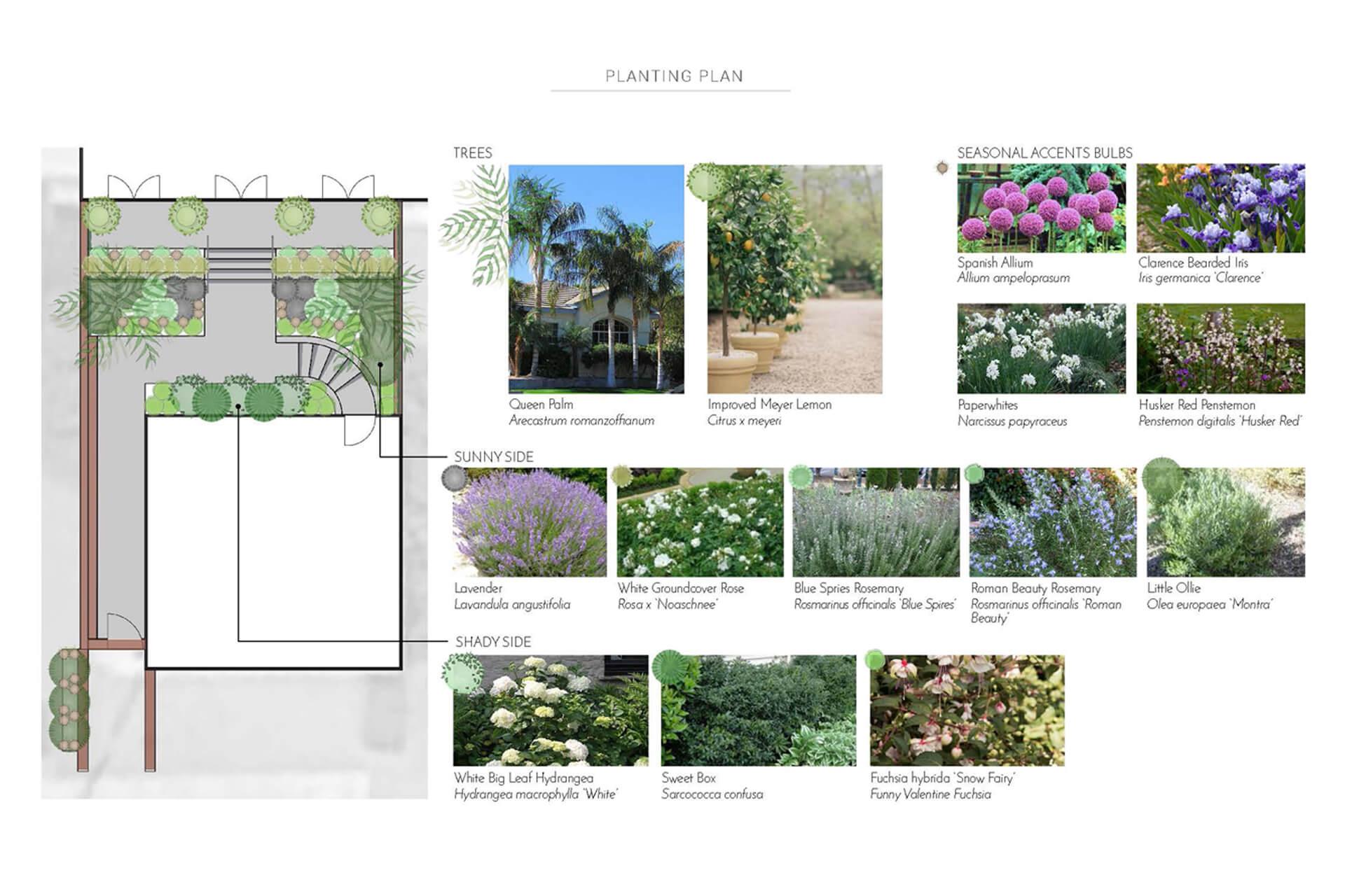Planting-Plan.jpg