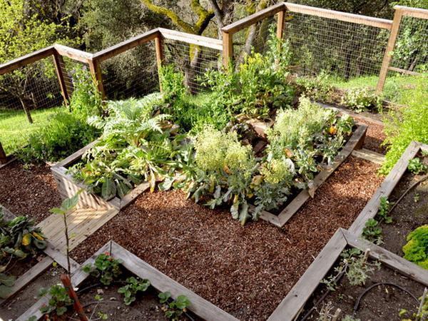 garden-designs-paths-backyard-landscaping-ideas-3.jpg