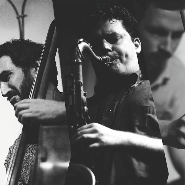Malleus Trio -