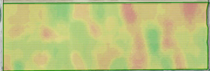 Variable Rate Nitrogen Prescription Map