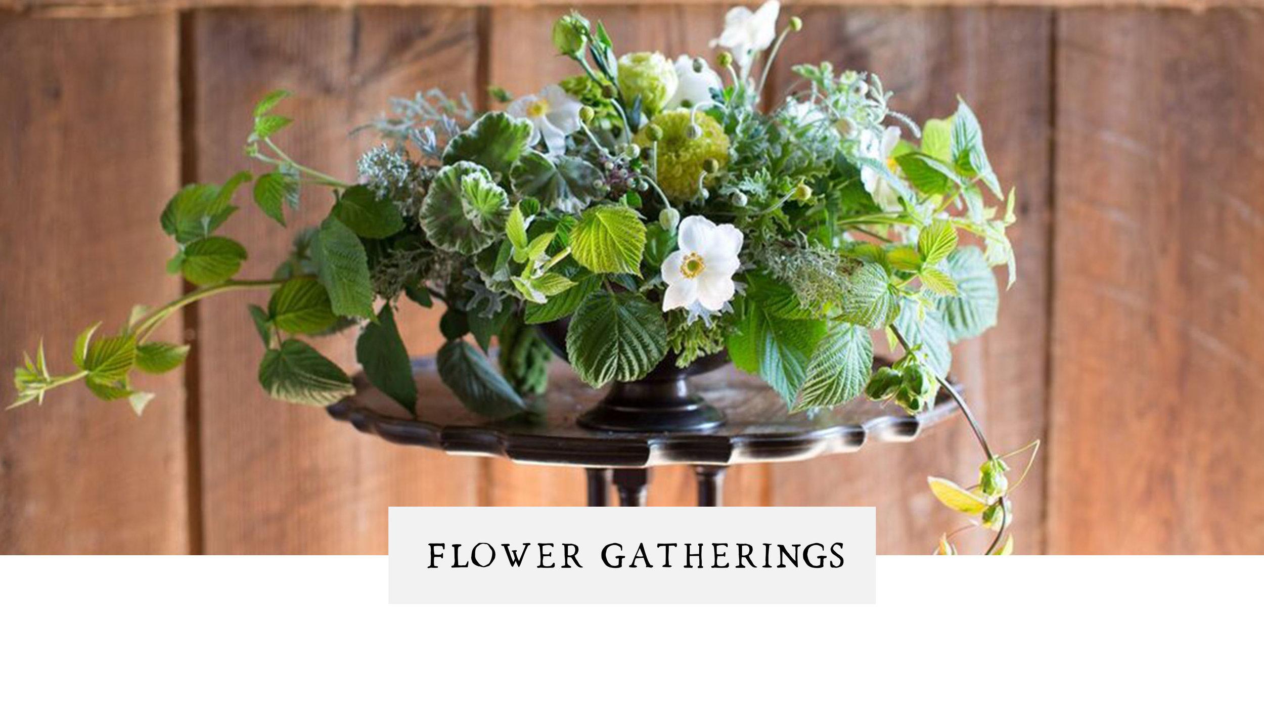PassifloraFlower Gatherings.jpg