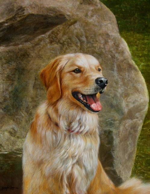 Golden Retriever Portrait by Jennifer Chapman