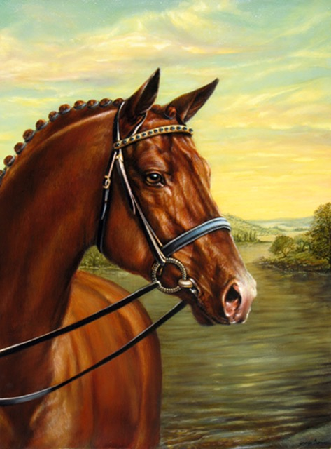 Horse Portrait by Jennifer Chapman