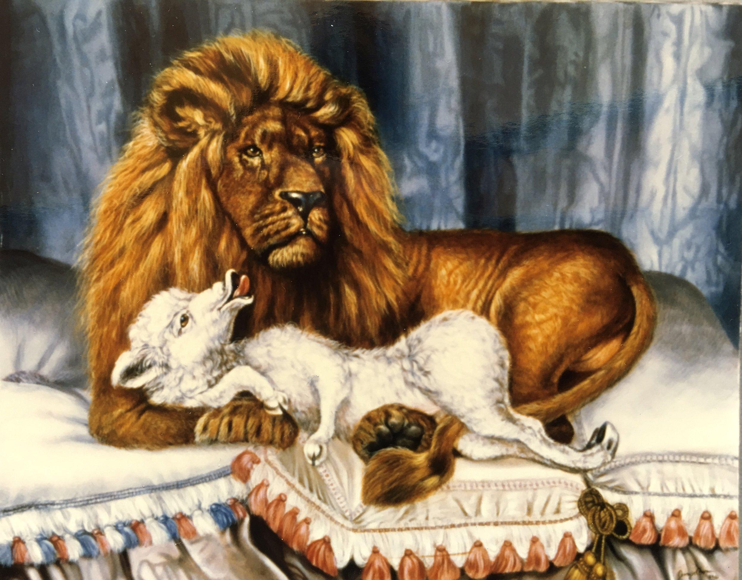 Lion and the Lamb Painting by Jennifer Chapman