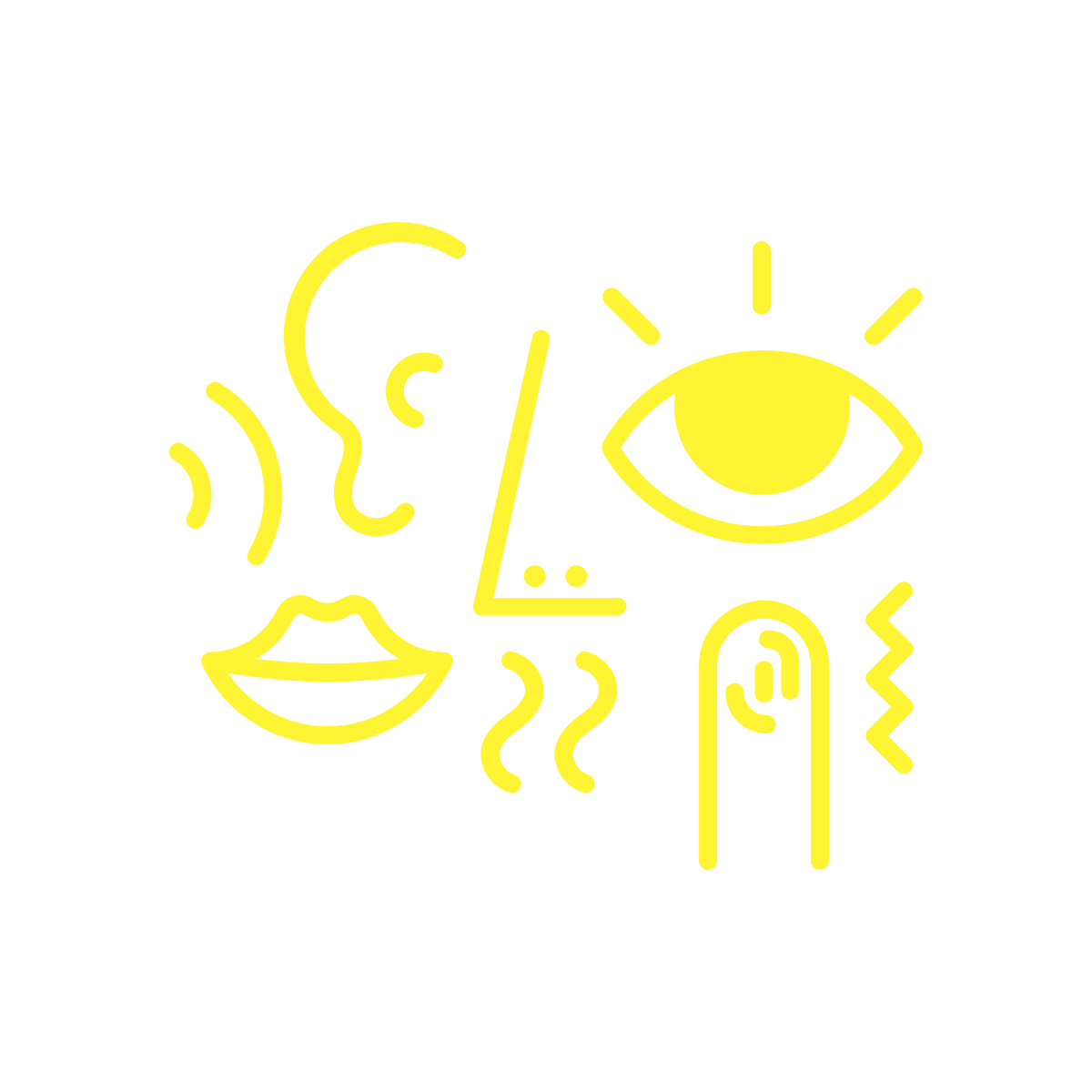 Picture representing the 5 senses