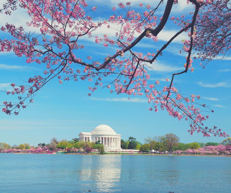 Washington DC.png