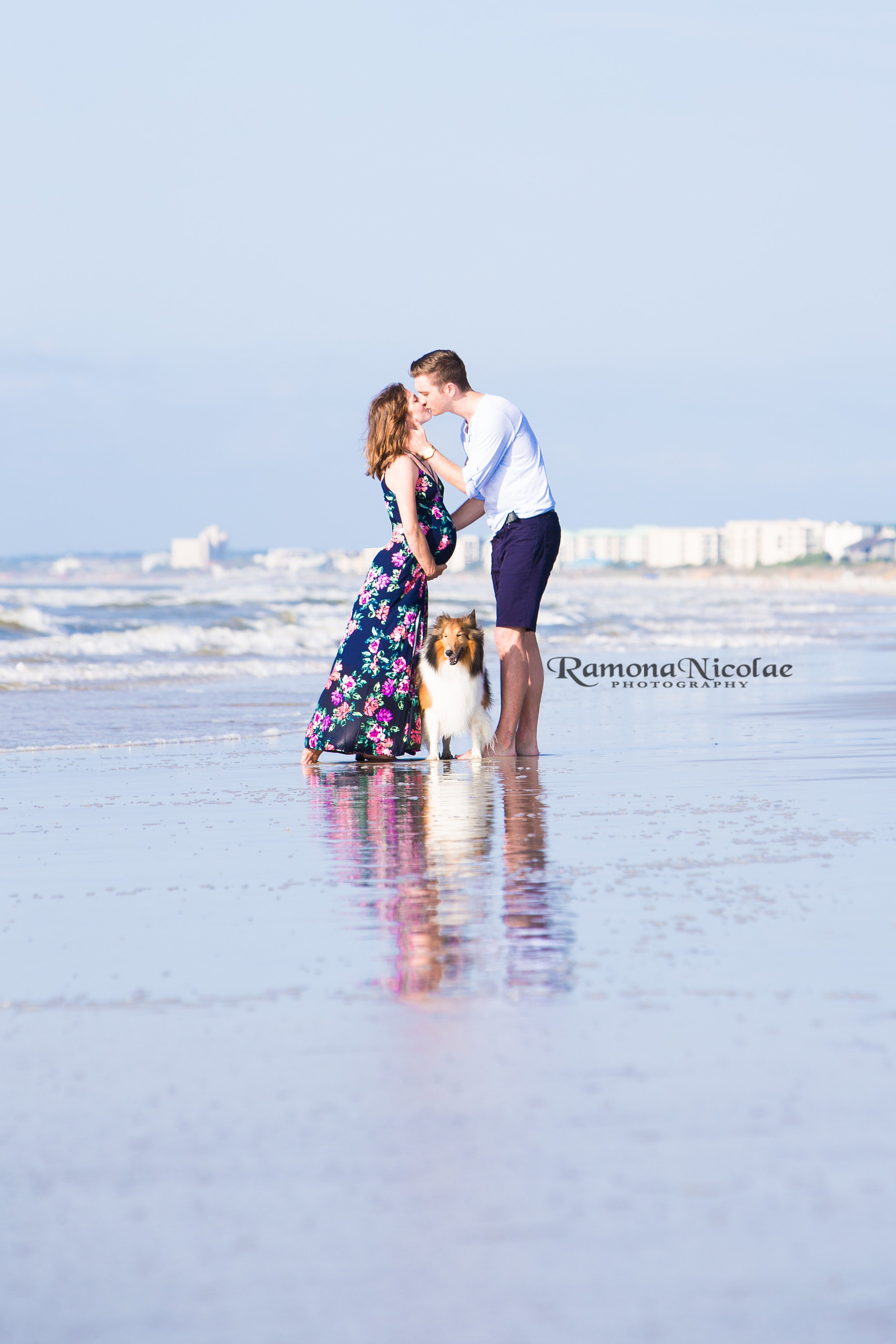 maternity shoot couple on the beach with dog and reflections ramona nicolae photography.jpg