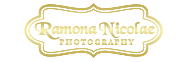 Myrtle Beach Photographers | Wedding Photographers | Real Estate Photographers | Family Photographers