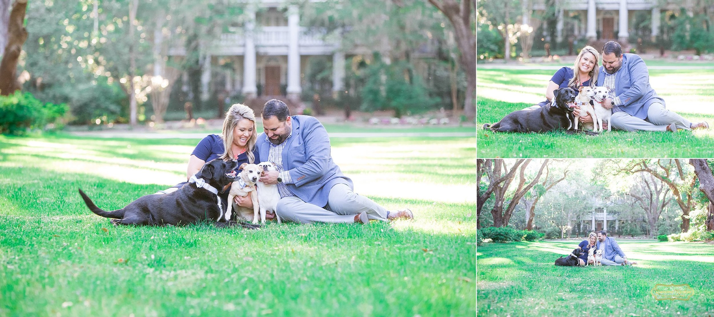 engagement pictures with dogs at watchesaw plantation .jpg