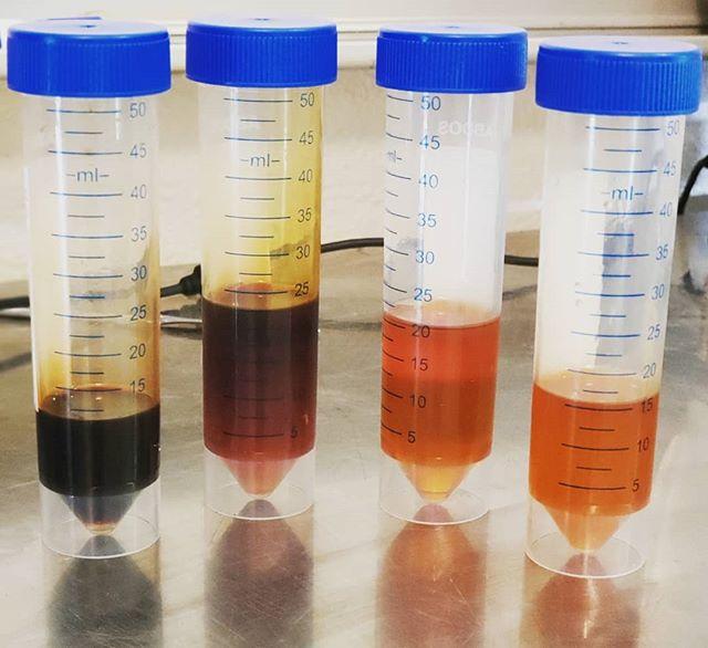 SCIENCE!!! 🔬👩🔬 #hemp #science #testing #distilation #accuracy #qualitytesting #industrialhemp