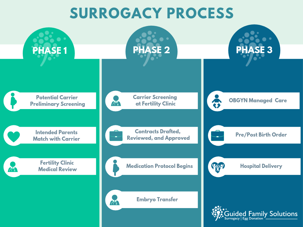 Surrogacy Process.png