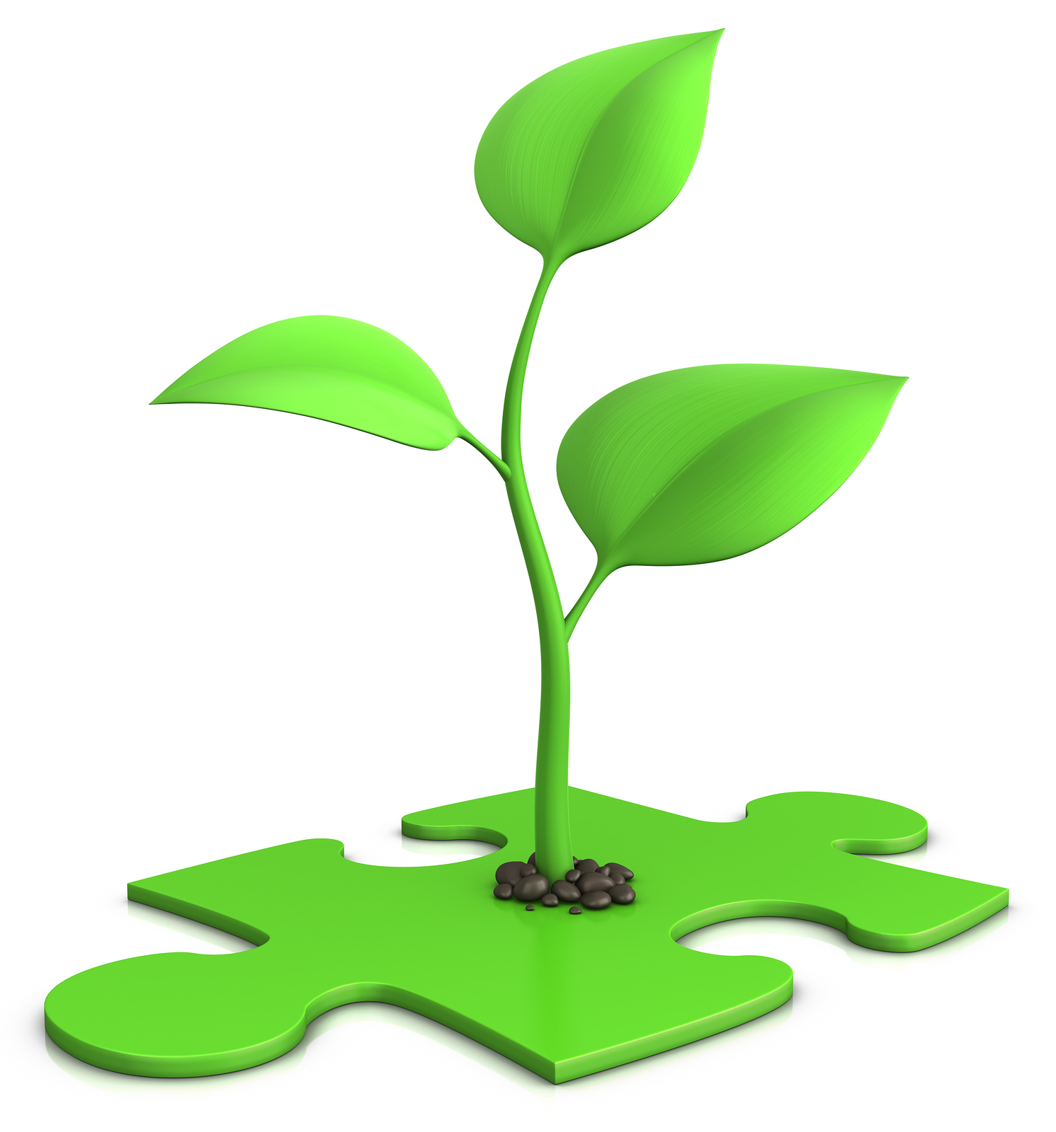 plant sprout on puzzle.jpg