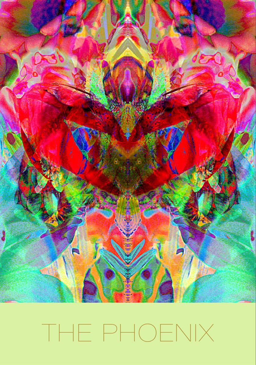 The Phoenix Mandala