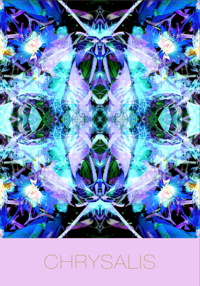 Chrysalis Mandala
