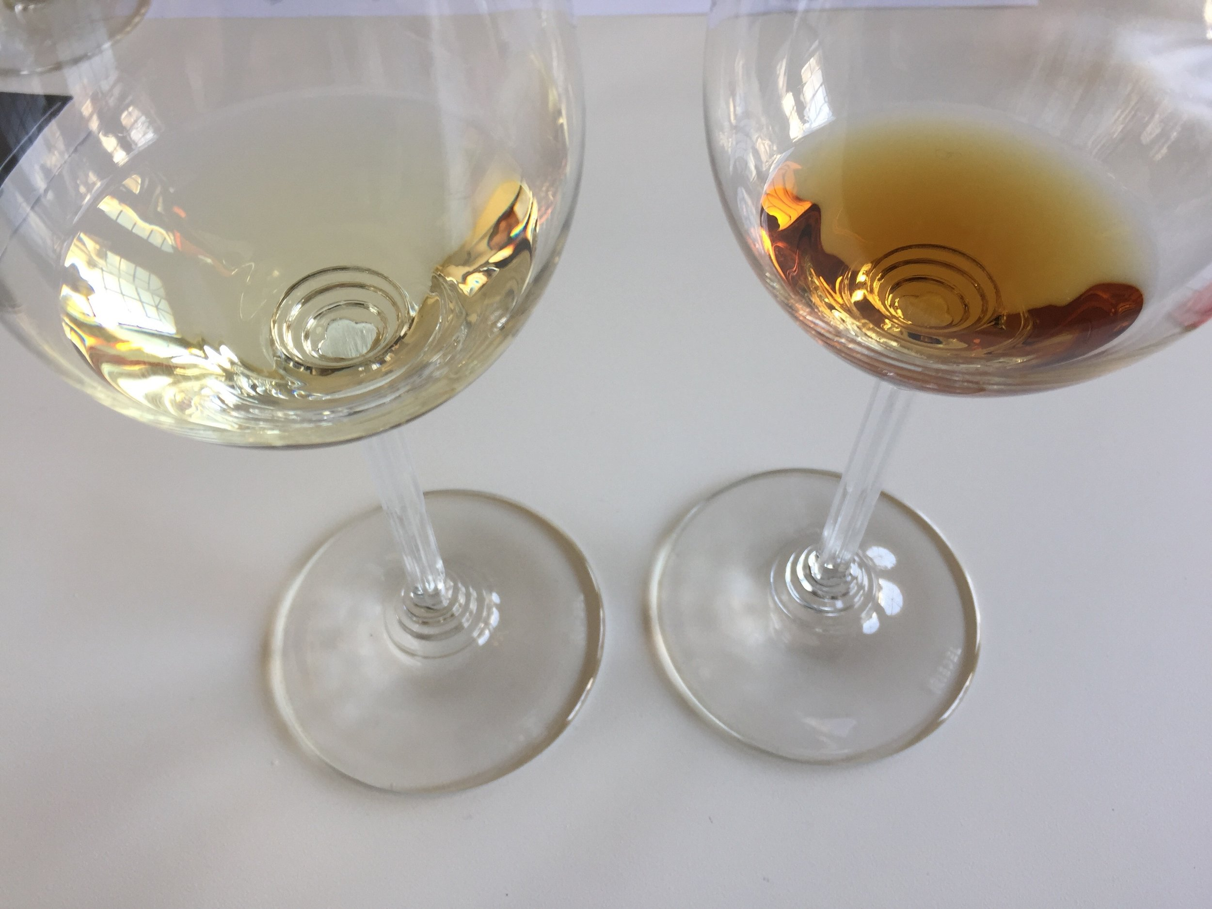 fino v. amontillado: the same wine but very different