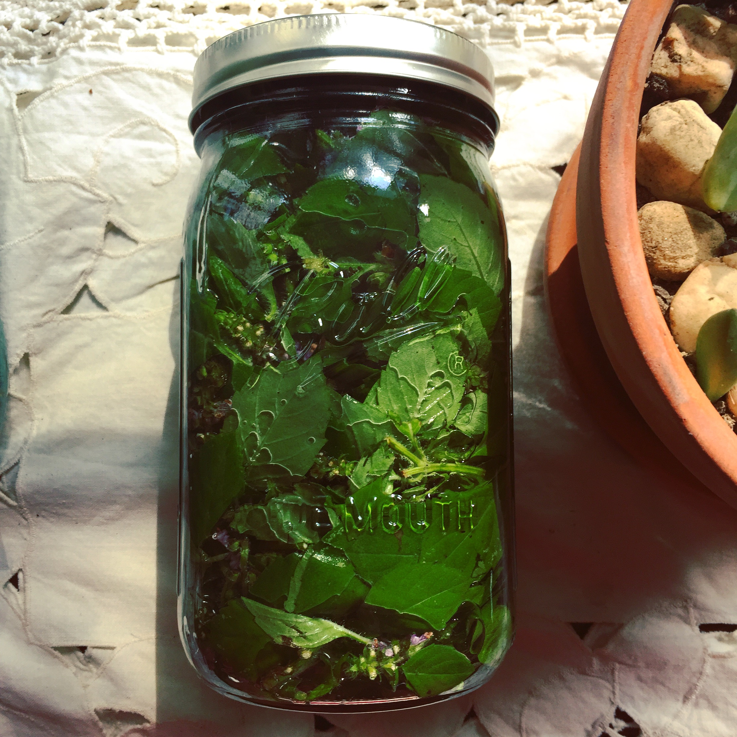 tulsi tincture - the herb that wants you to have your best, clearest thinking under pressure.it supports us with:clearing mental fog, building immunity, and balancing hormones.$10 per 1 oz bottle$20 per 2 oz bottle
