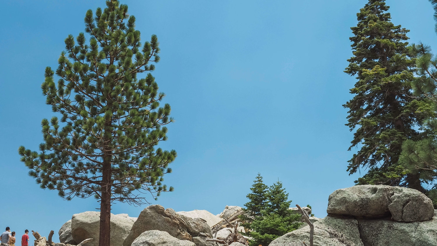 State and National PArks -