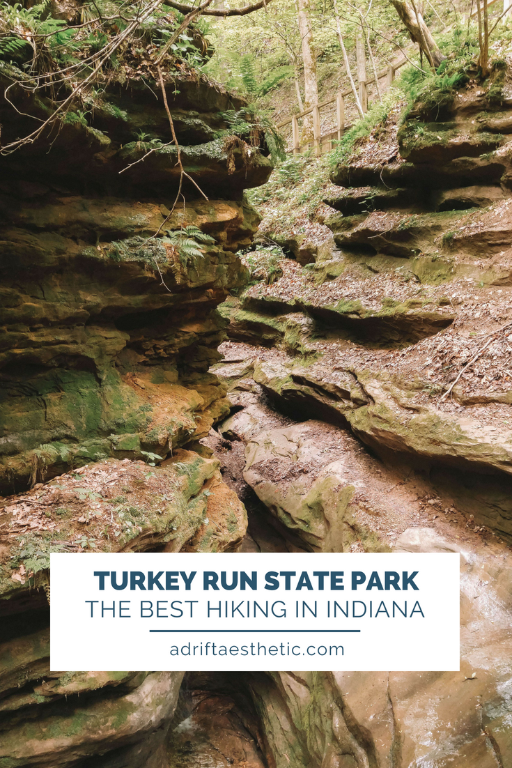 Turkey Run State Park is a hidden gem in Indiana. With miles of rugged hiking trails and beautiful scenery it's sure to make you excited to get outdoors. #hiking #indiana #turkeyrunstatepark
