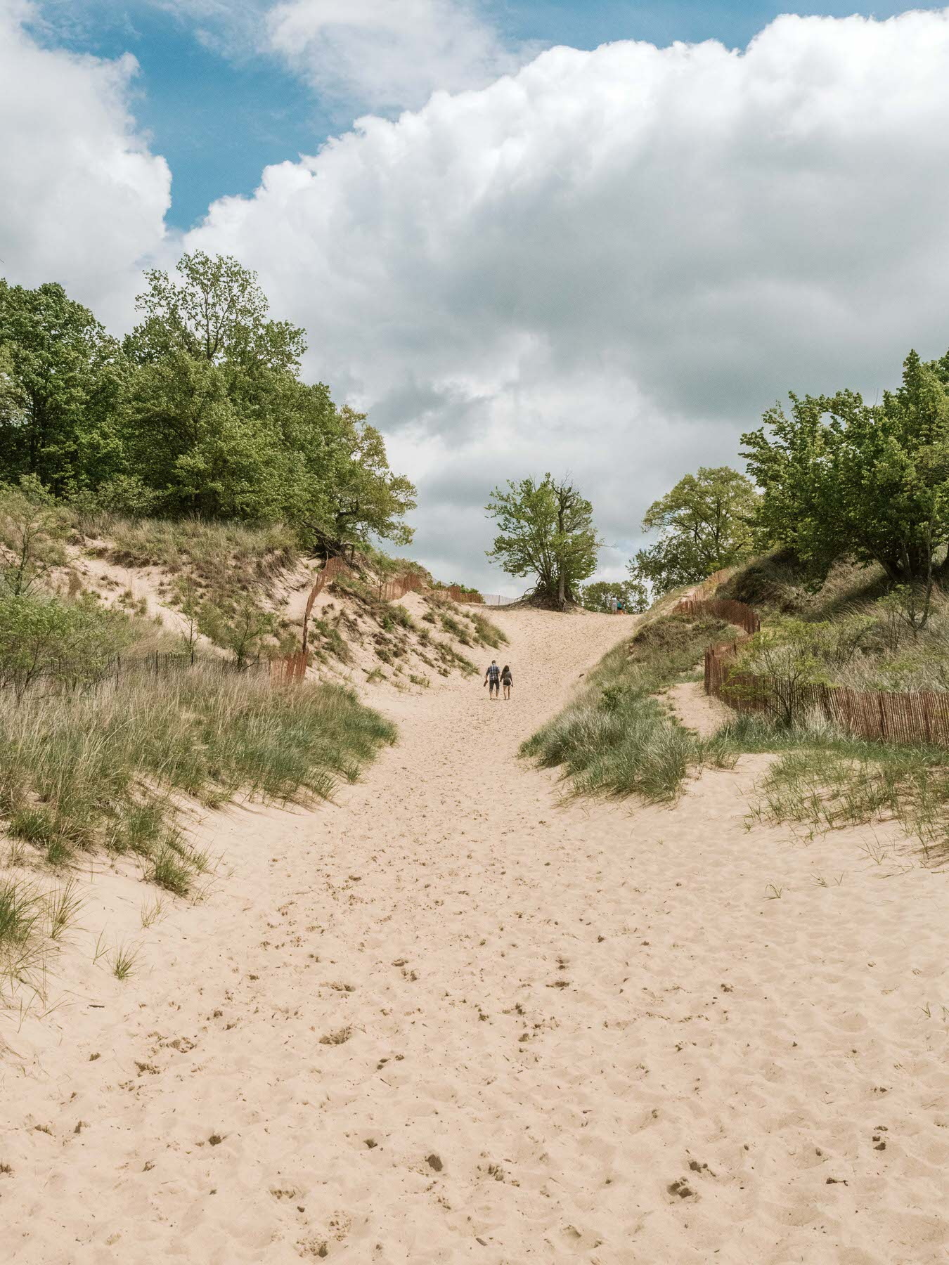 Everyone visits Indiana Dunes for the beach but now that it's officially a National Park, it's the perfect excuse to check out all the amazing hiking trails the area has to offer. Whether you are hiking in sand up the tallest dune in Indiana, or trekking through bogs and marshland, there are so many fun hiking routes to explore. Indiana Dunes National Park is the perfect vacation spot for anyone in the Midwest. #traveldestinations #indiana #hiking