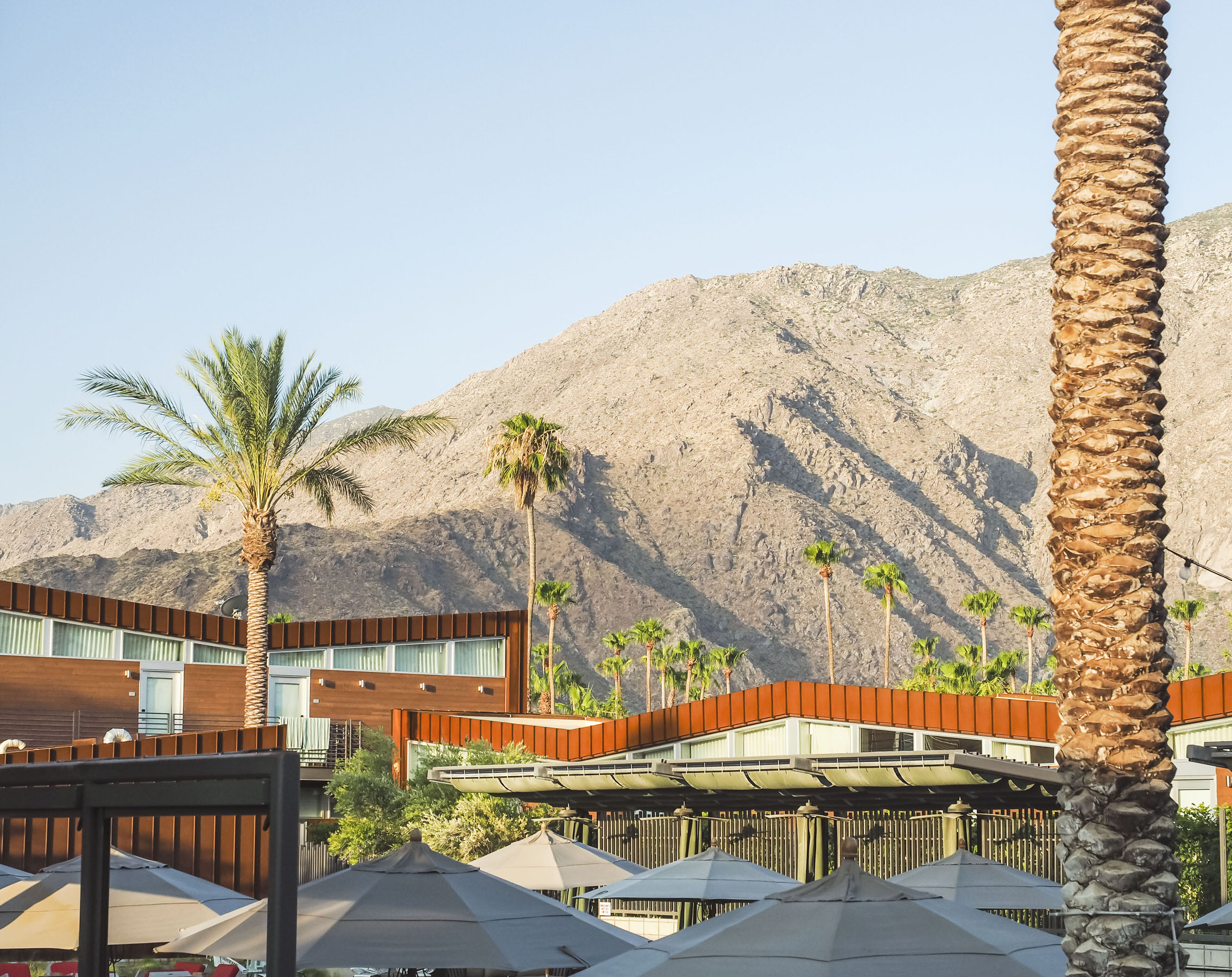 There are many chic boutique hotels in Palm Springs but the Arrive Hotel is one of the most beautiful. With a view of the mountains, an amazing pool and adorable ice cream shop, this is definitely where to stay in Palm Springs! #california #hotel #traveldestinations