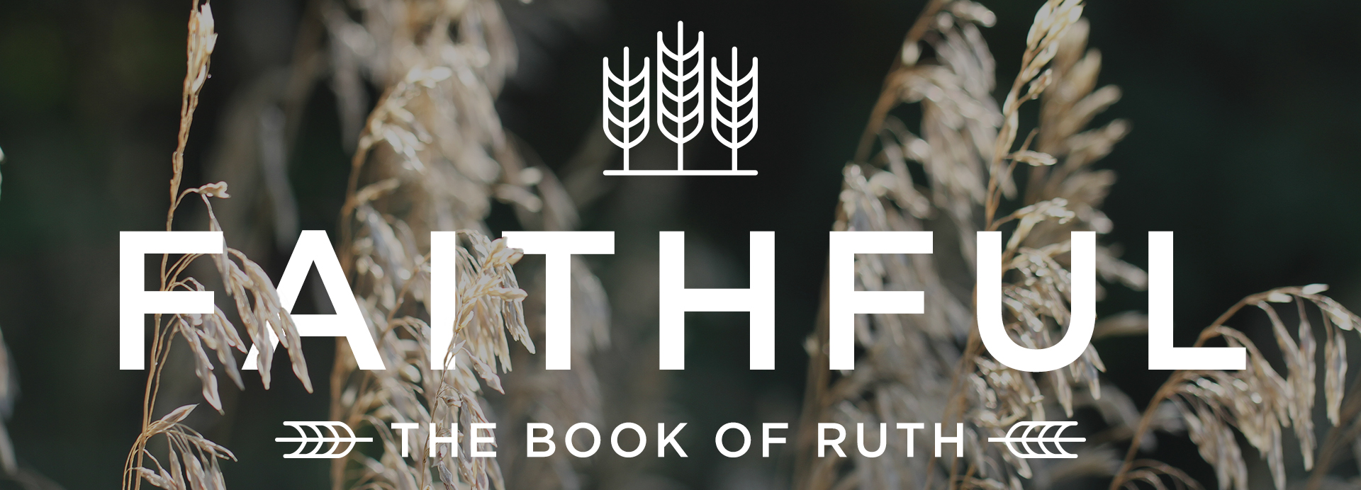 Ruth_banner.jpg