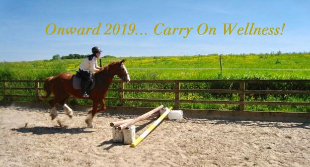 """Dasher and Me"" © Crossogue Equestrian Tipperary Ireland"