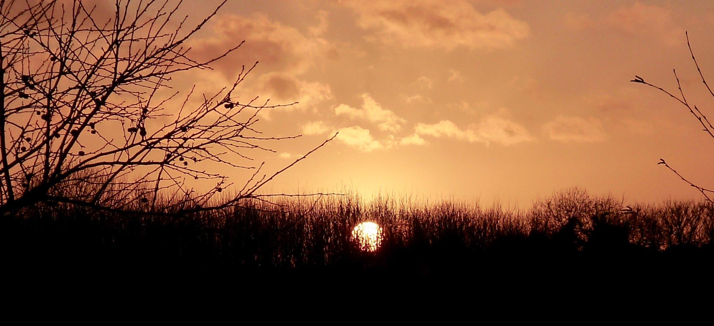 """Sun Hedged"" © June 2015  mariannenishifue.com  9:45 PM Enniscorthy Ireland"