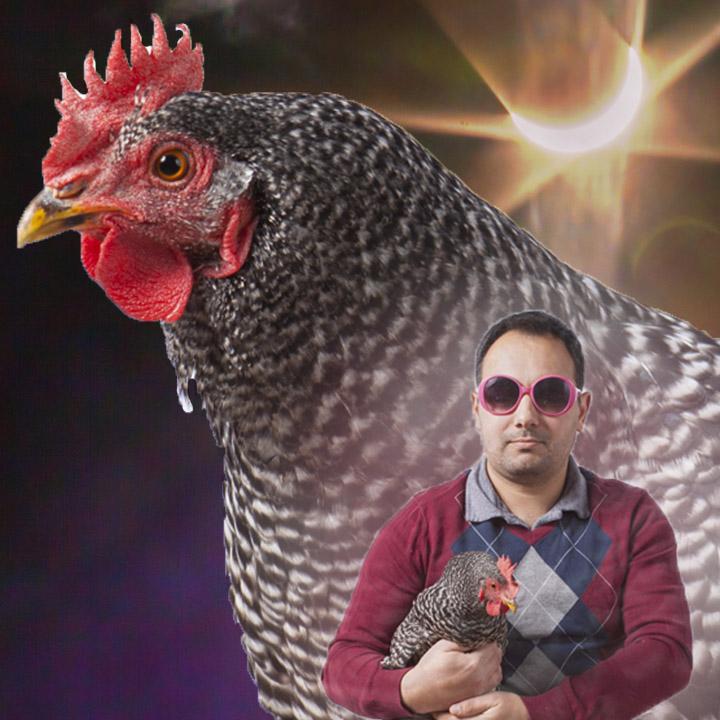 Chicken_Portrait-eclipse.jpg