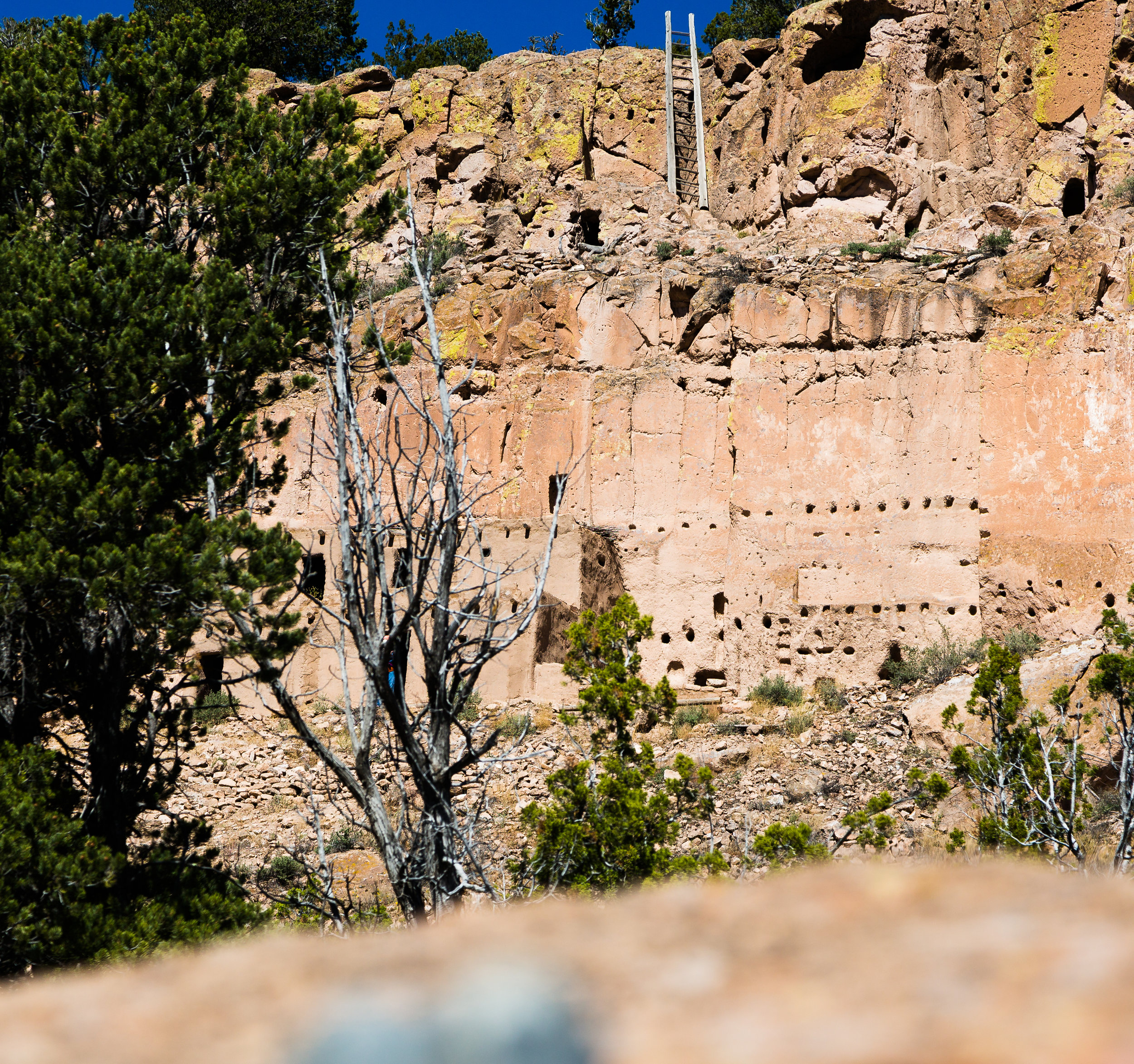 The cliff dwellings and caves are accessible via a 1.5 mile trail that spans the cliff face, while additional ladders and carved steps lead to the mesa top village above. These trails are only accessible with a guide.