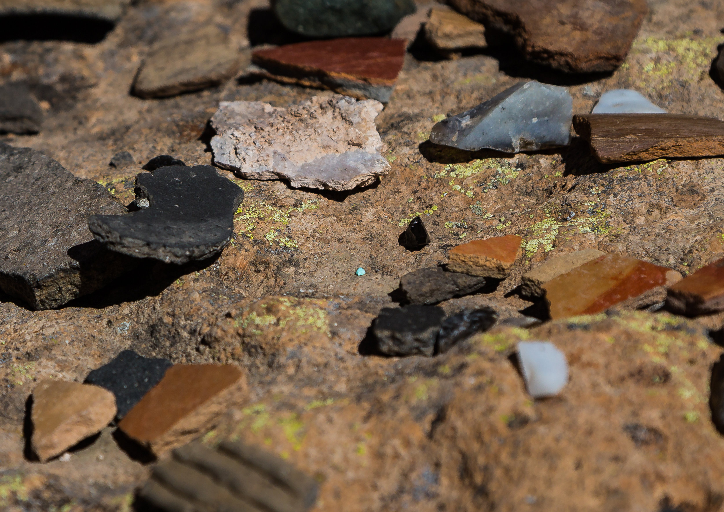 Among the pottery sherds and obsidian flakes, we spotted a rare find: a tiny pebble of turquiose.