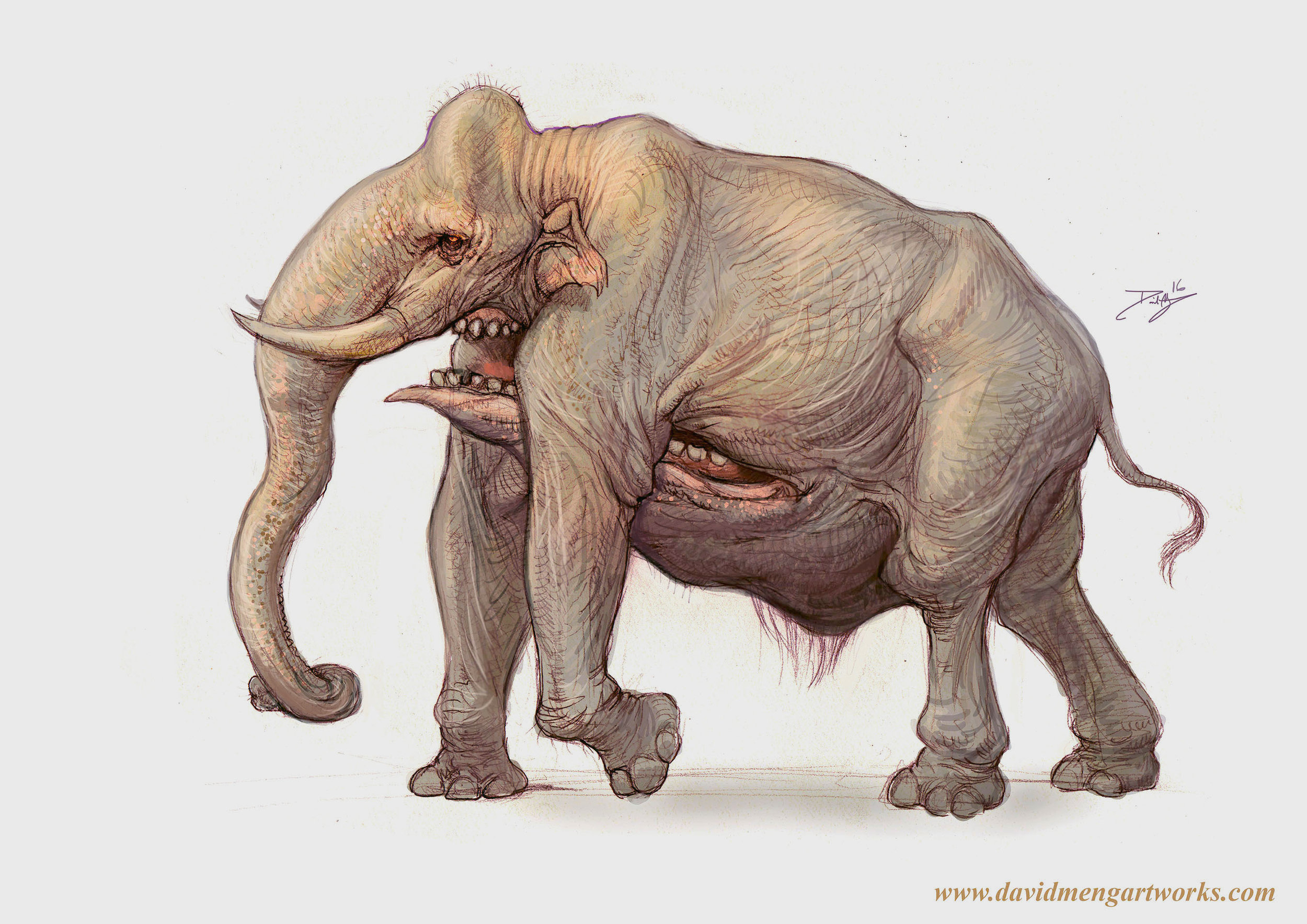BigJawElephant_Meng.jpg