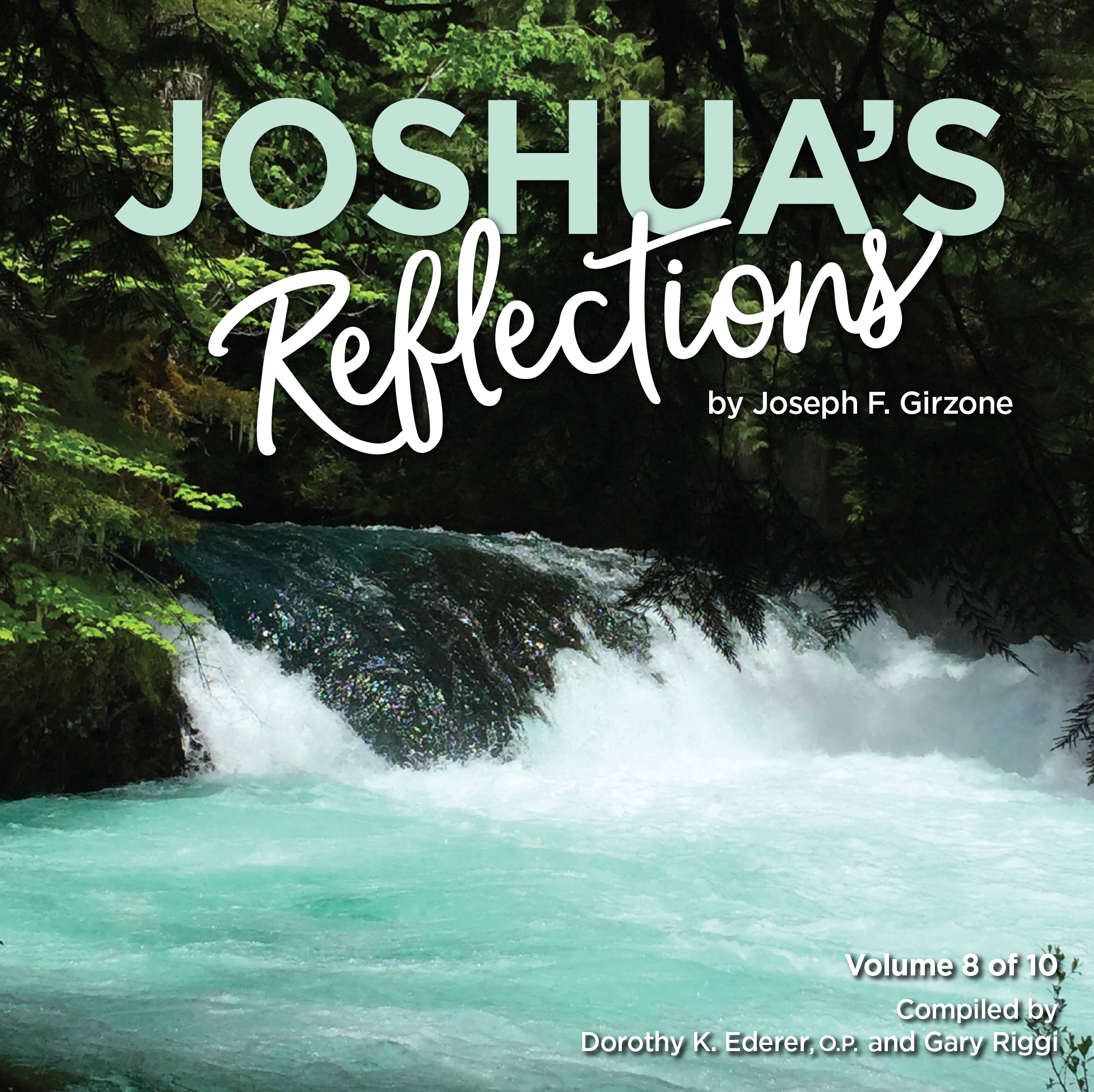 JoshuaReflections_Vol8_CoverPreview.jpg