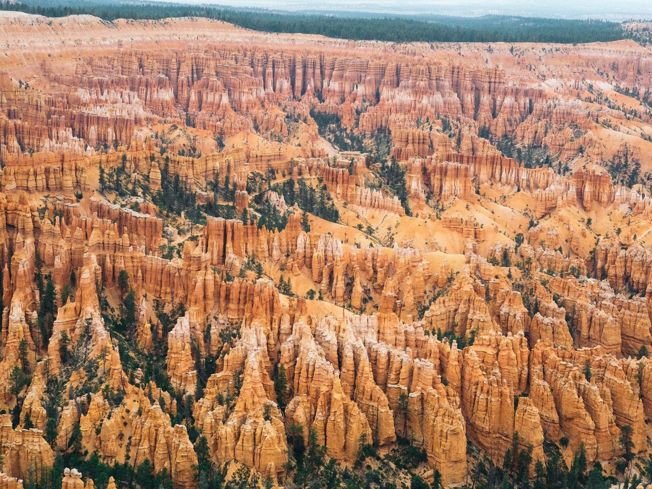 Bryce_Canyon-Cookwilltravel.jpg