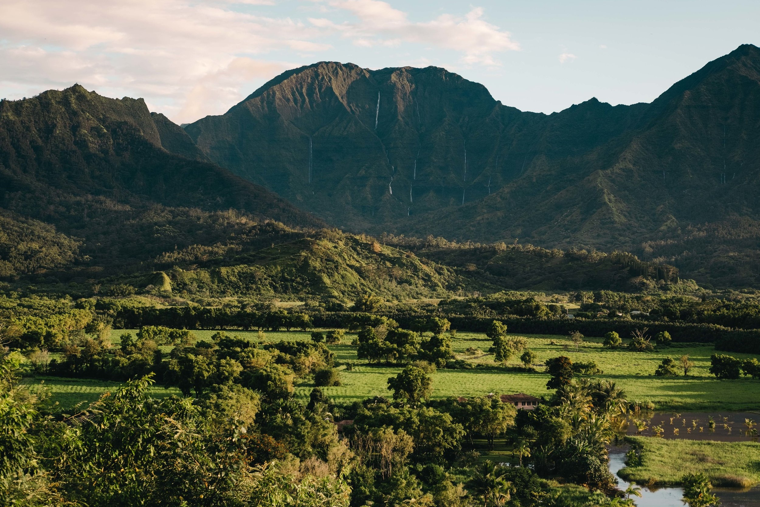 Cookwilltravel+-++Kauai+-+August+-+48.jpg