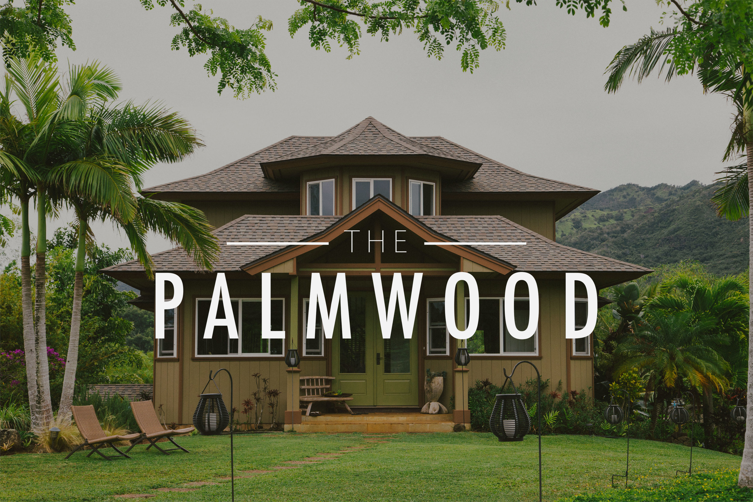Cookwilltravel-The-Palmwood-Banner-Image.jpg