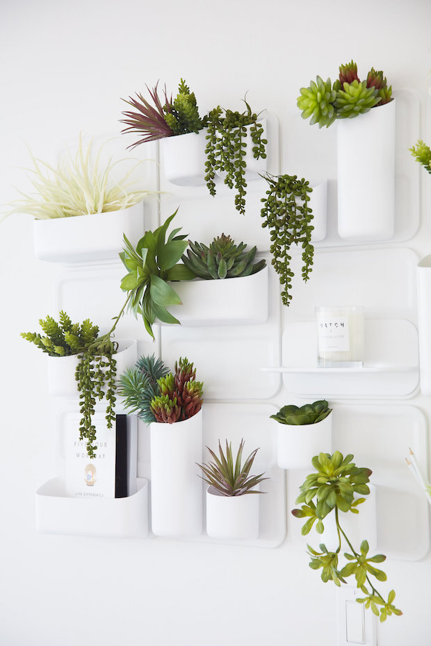 Hanging Plant Wall