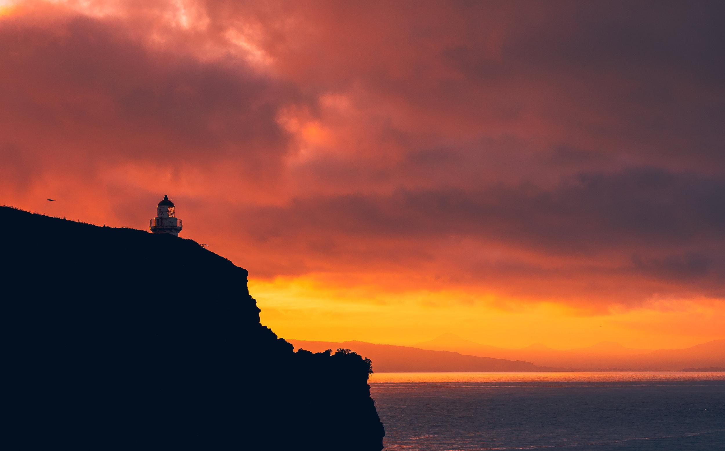 Harrington Point, Otago Peninsula, New Zealand