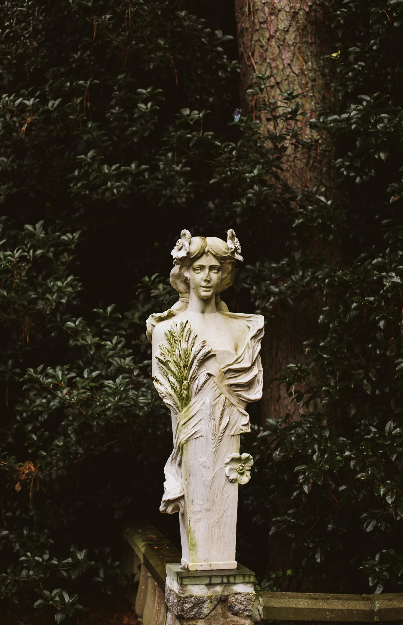 hamptonroads_wedding_norfolk_botanical_gardens-37.JPG