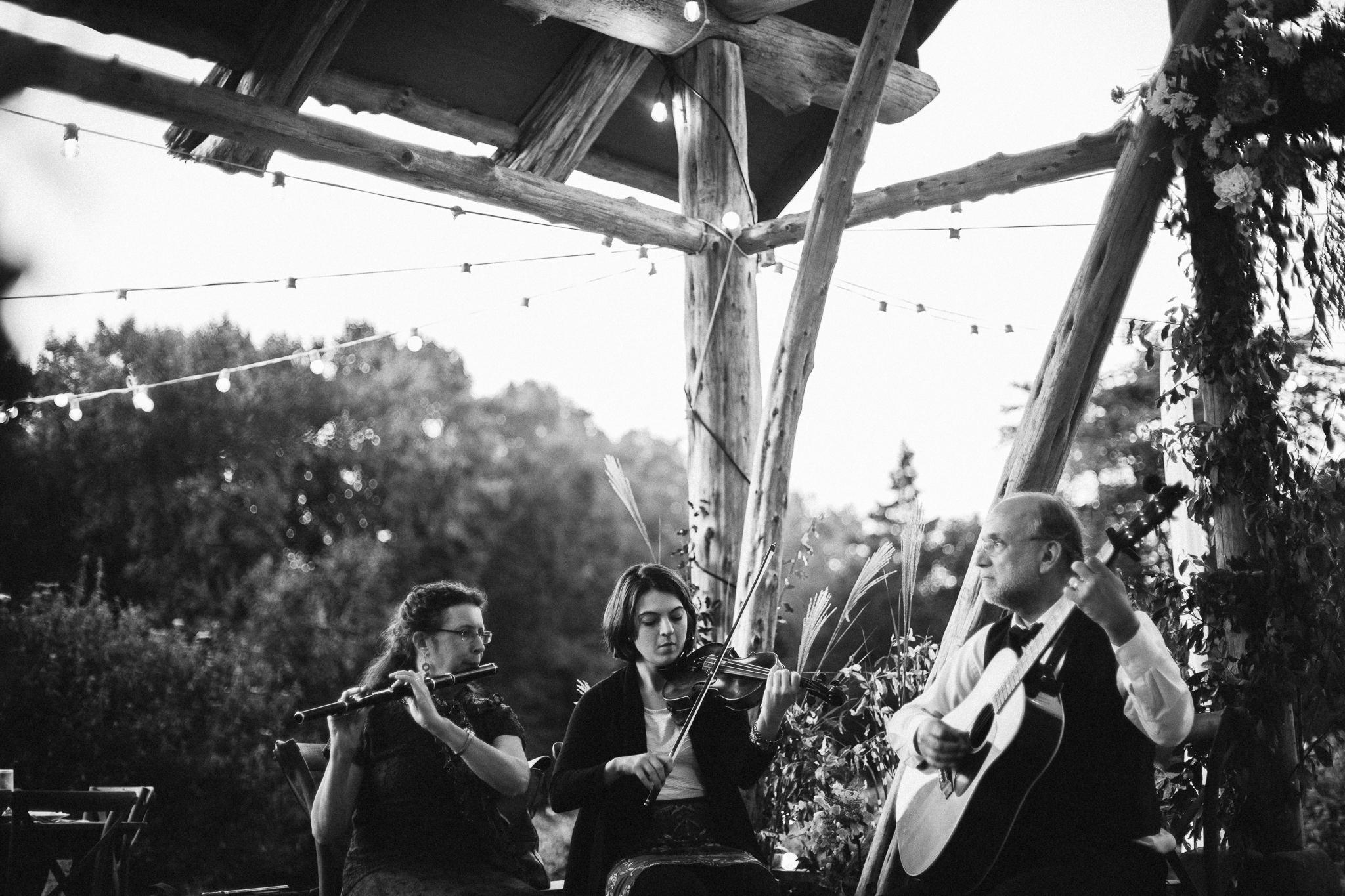 Wollam_gardens_wedding65.JPG