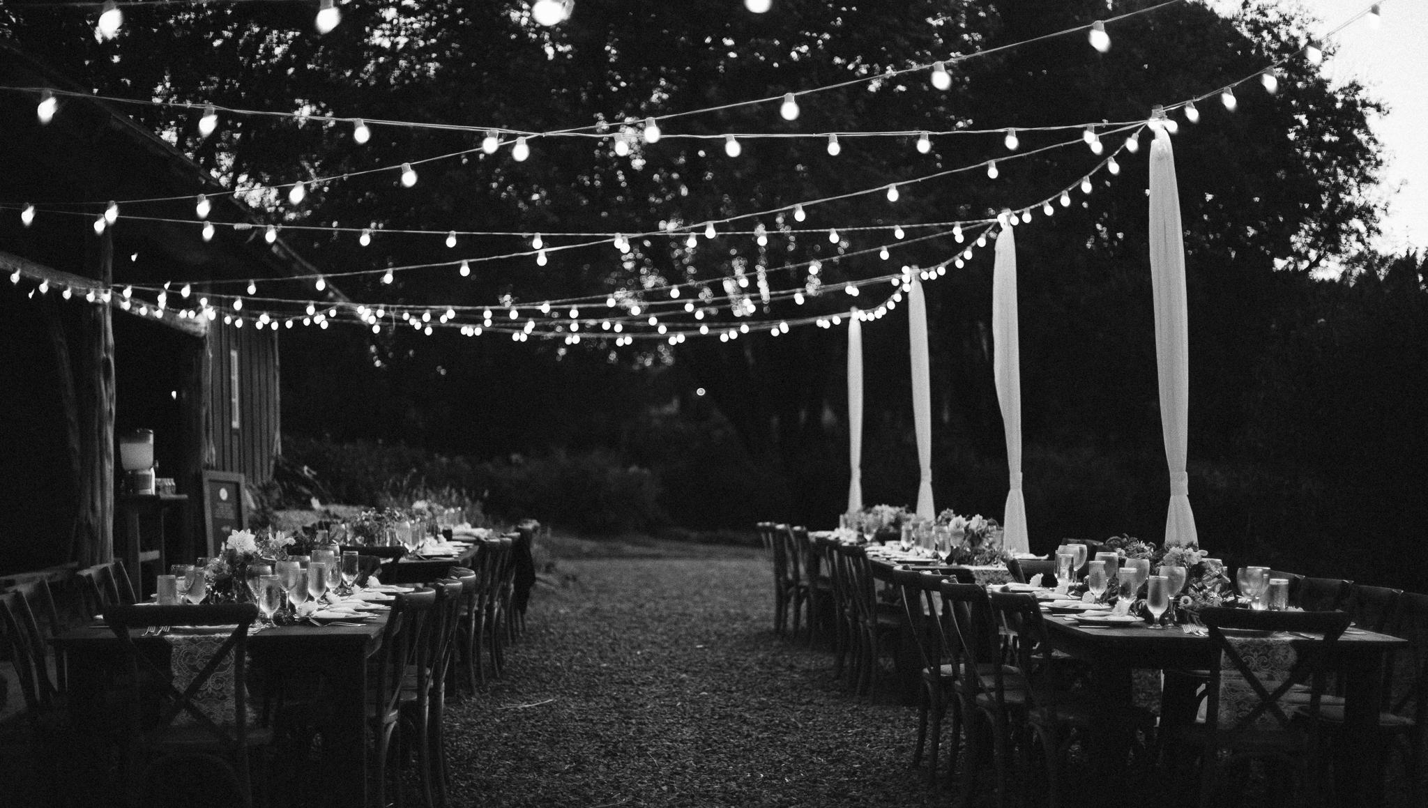 Wollam_gardens_wedding71.JPG