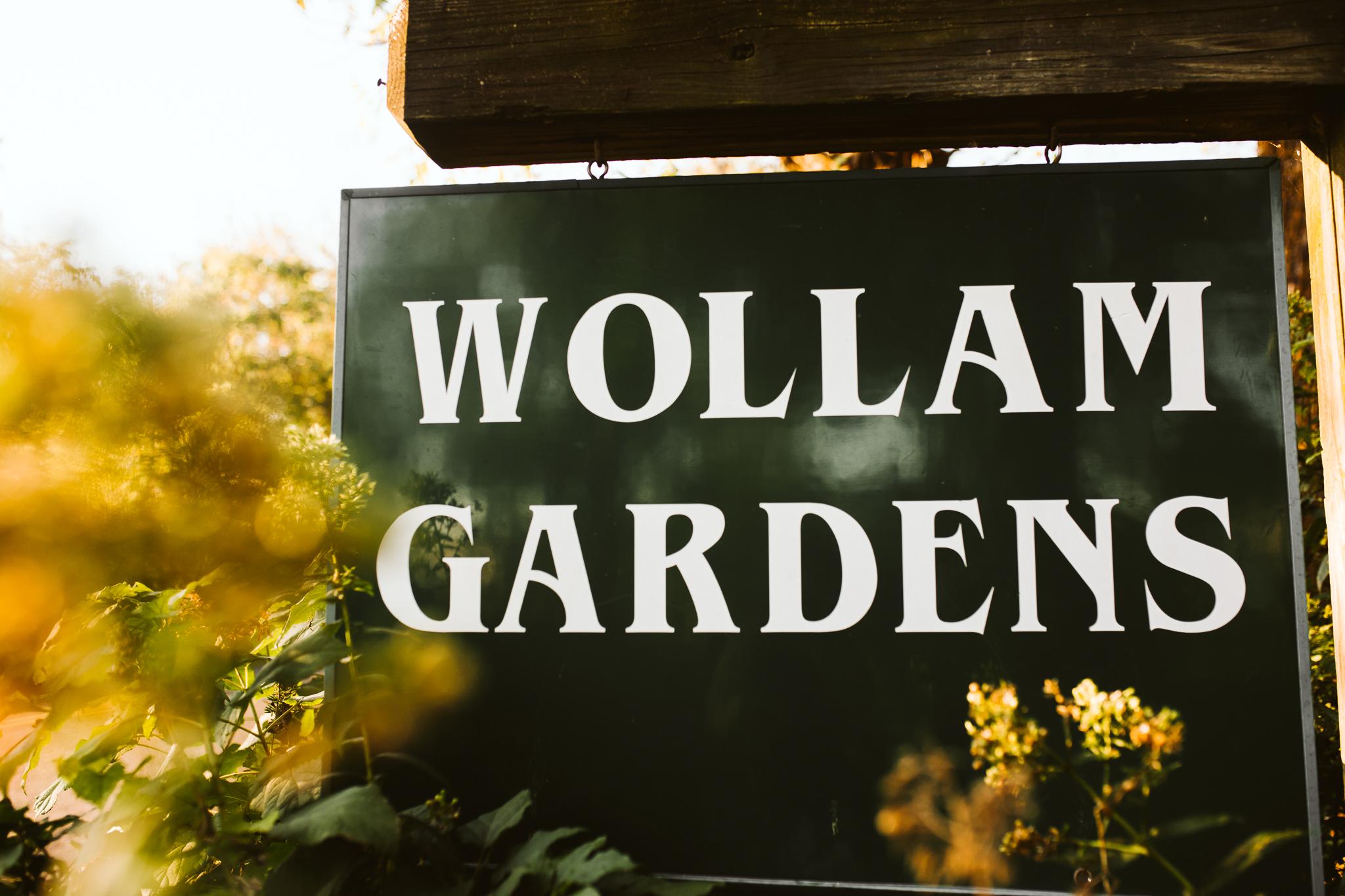 wollam_gardens_wedding_jeffersonton_virginia_2.JPG
