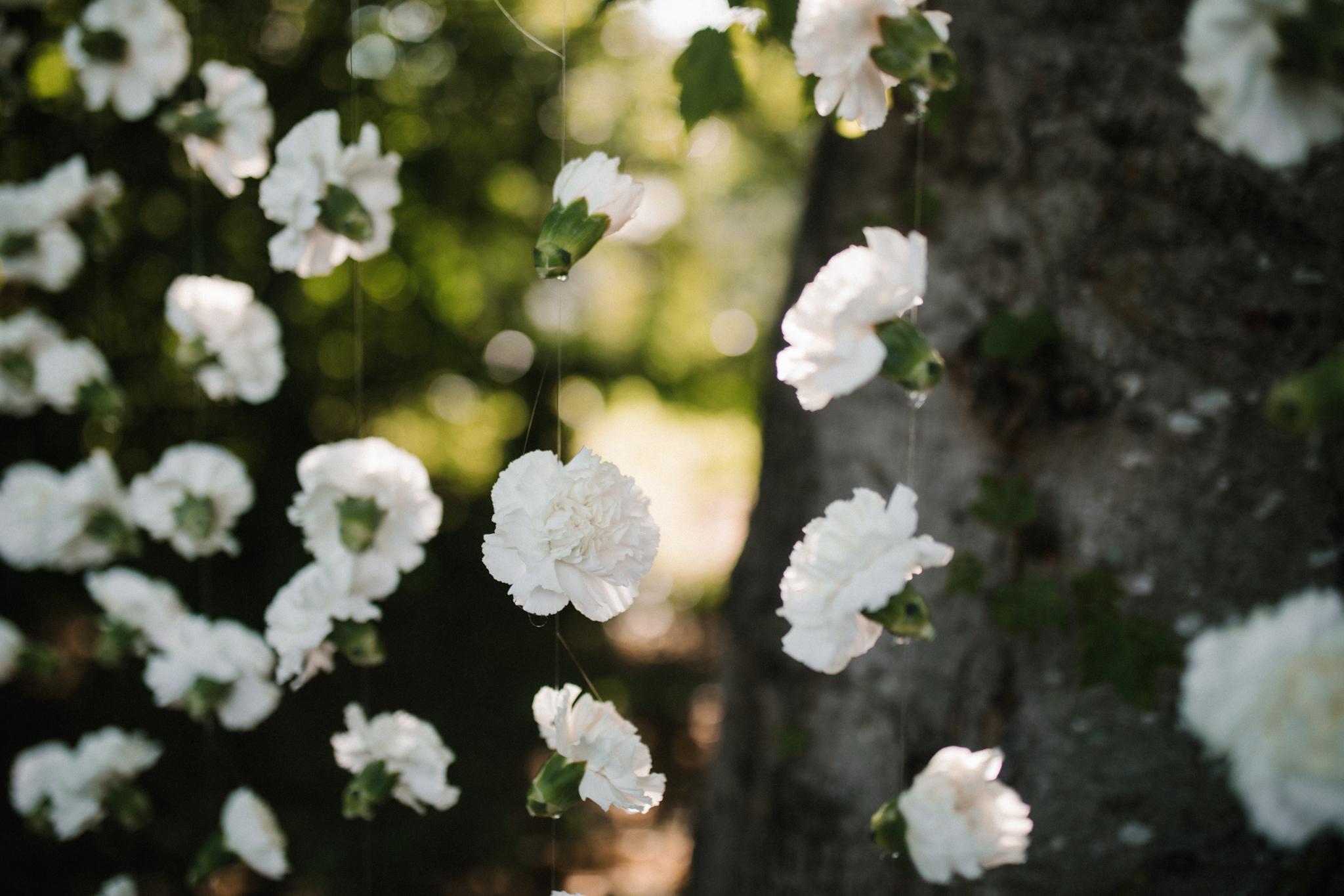 dorota_dwight_richmond_backyard_wedding-7.jpg