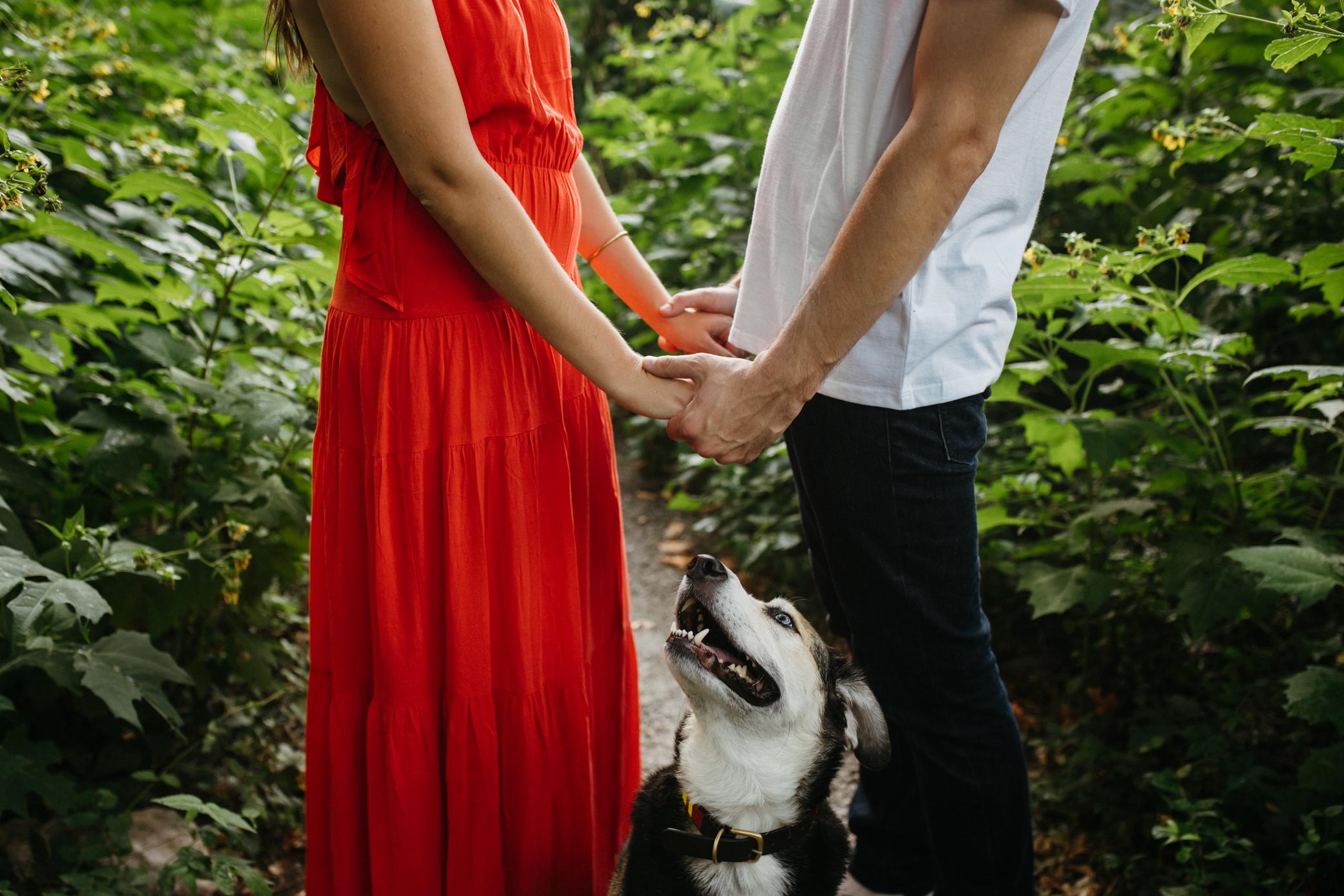richmond_wedding_photographer_libby_hill_wolftrapfarmwedding-9.jpg