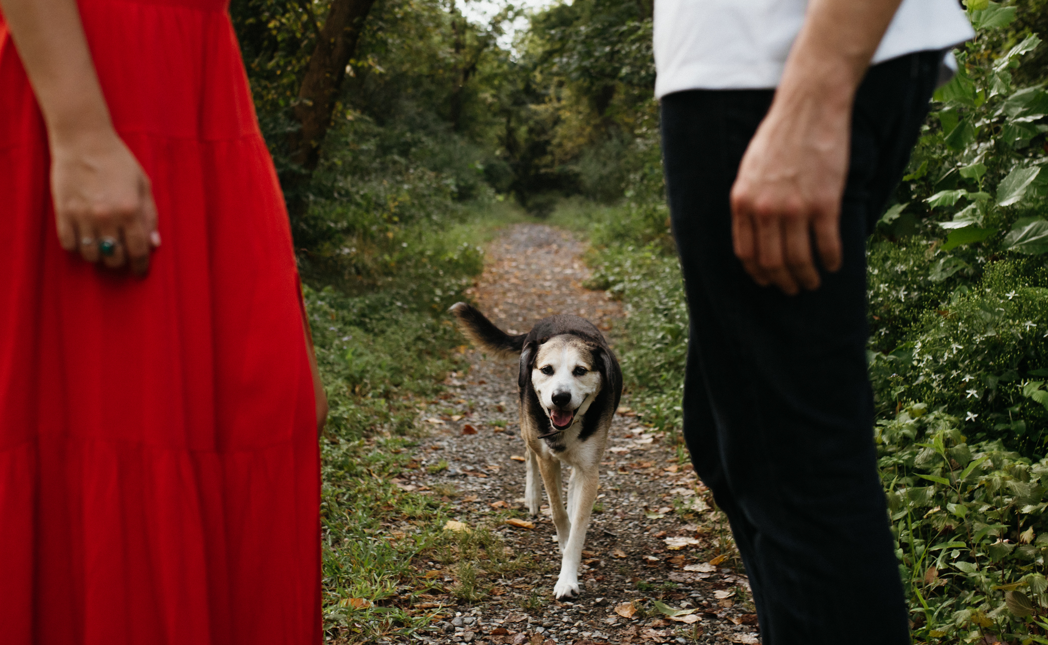 richmond_wedding_photographer_libby_hill_wolftrapfarmwedding-43.jpg