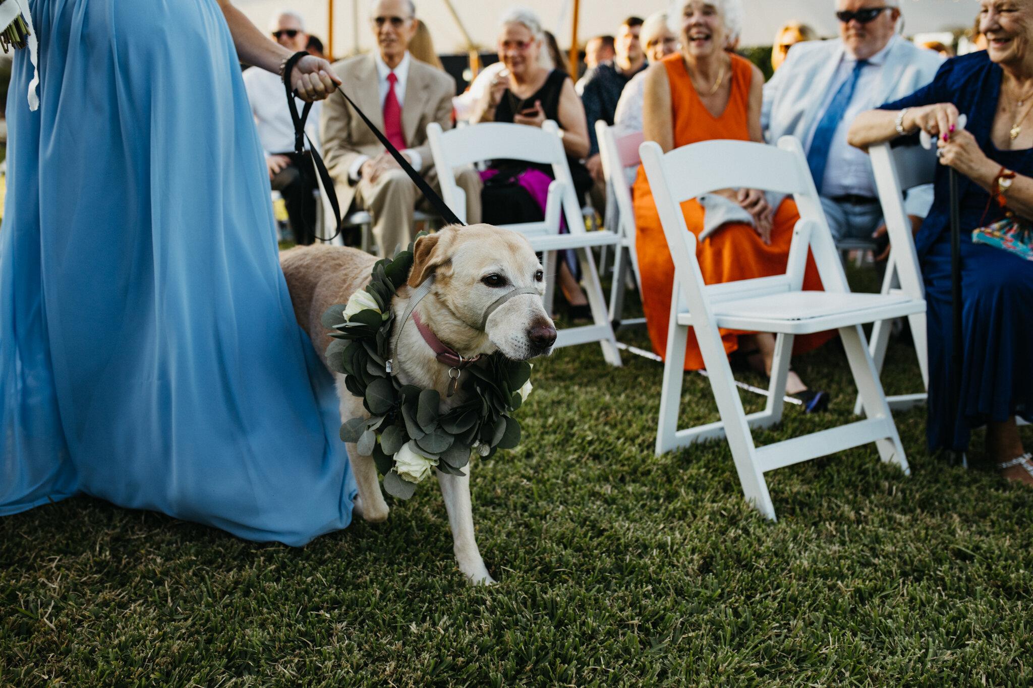angela_jason_norfolk_wedding-91.jpg