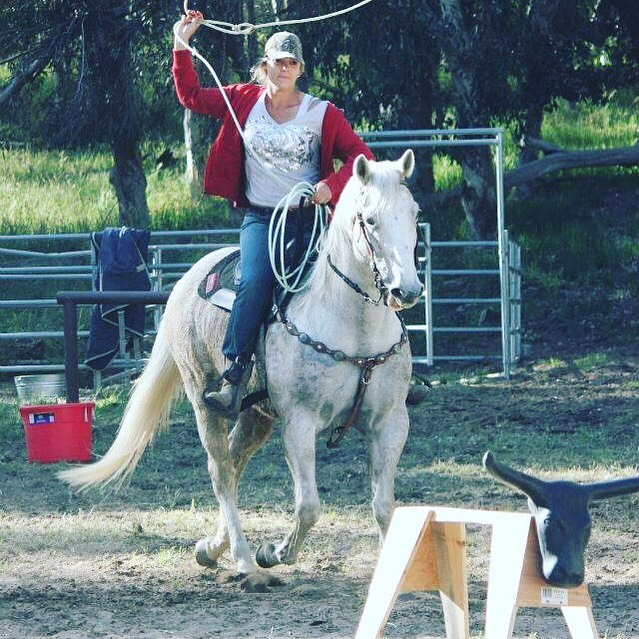 Day 4 Of the Horse owner/rider challenge.  I was nominated by @bleighcook to take the 10 day challenge where I post a pic, with no explanation, of something that has had an impact on my life with horses.  That is 10 days, 10 pictures and 10 nominations with zero explanations.  I nominate @bleighcook