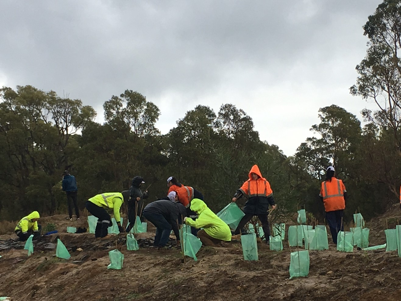 Workshop participants planting native trees at Kaarakin. Trees were donated by Holcim from their Gosnells site.