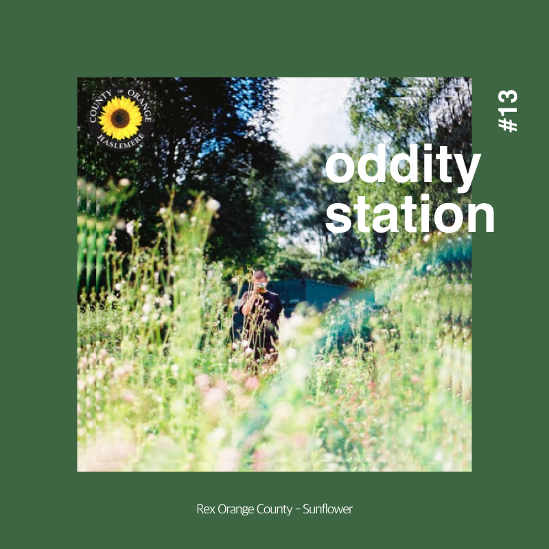 [인스타그램] oddity station2.016.jpeg