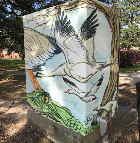 Lafayette, LA: Vinyl wrap on traffic light box; digital design.