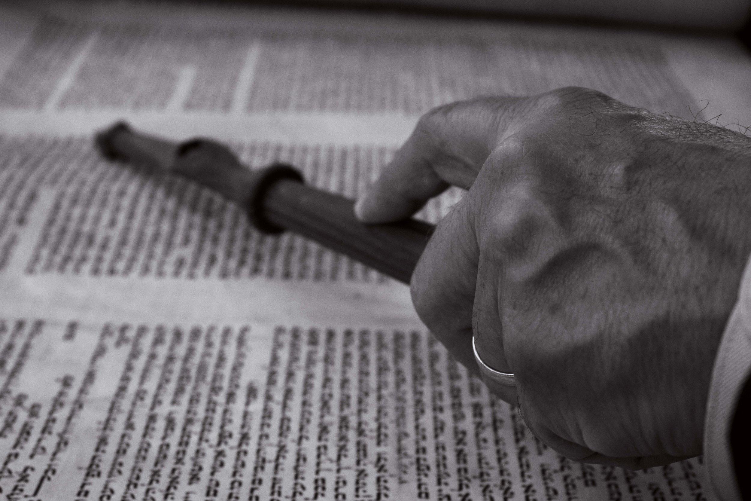 rabbihand.jpg